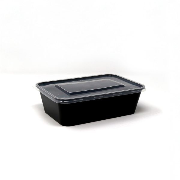 650ml Rectangle Container