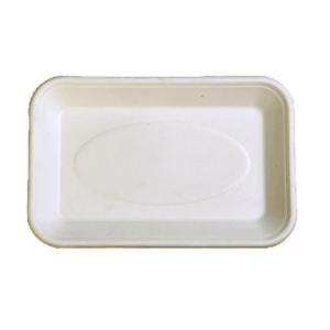 2D Bagasse Tray